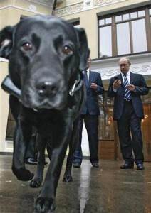 <I>Putin's ultradog.</I>