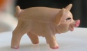 goldman-sachs-pig2